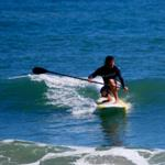 stand up paddle boarding charleston sc