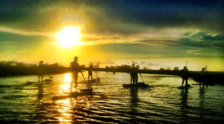 Stand Up Paddle Boarding Tours Charleston SC
